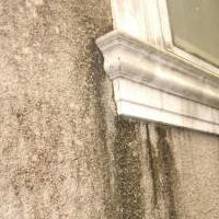 外壁のしつこい汚れ