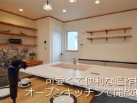 オープンキッチンがおしゃれな可愛い家